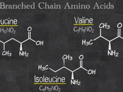 Totul despre BCAA sau aminoacizii cu lanț ramificat