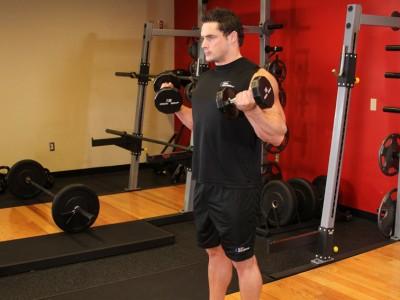 Flexii Zottman cu gantere pentru biceps