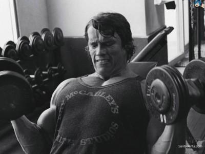 Antrenament pentru bicepși de la Arnold Schwarzenegger