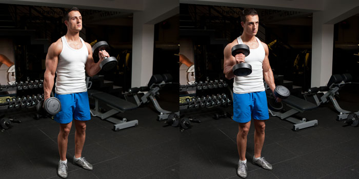 flexii alternative hammer pentru biceps