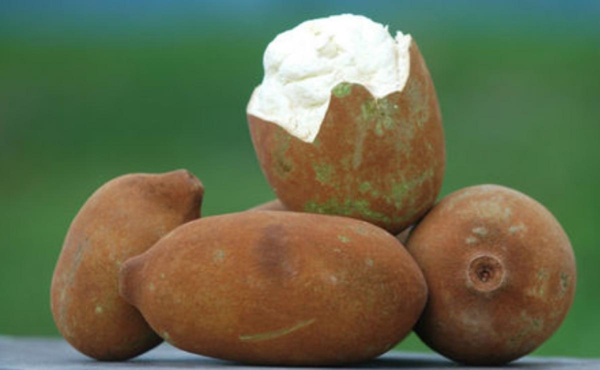 10 alimente exotice care îți îmbunătățesc starea de sănătate - Cupuacu